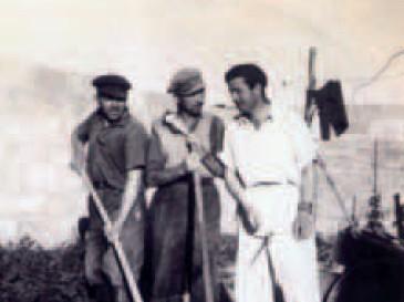 Les Castors sur leur chantier